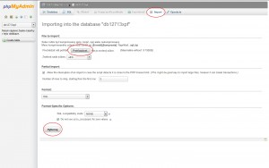 Import MySQL databázy pomocou phpMyAdmin